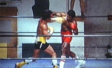 Tech it or Leave it Rocky